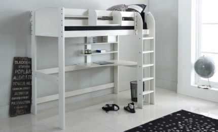 Exclusive High Sleeper White Straight Ladder